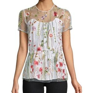 Walter Baker Embroidered Top (never worn)